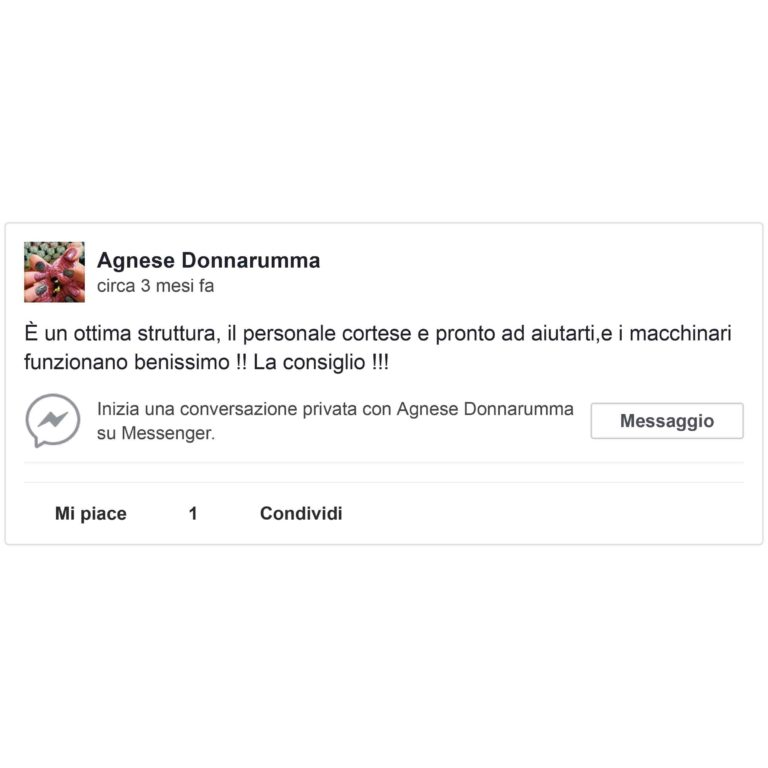 agnese-donnarumma_light
